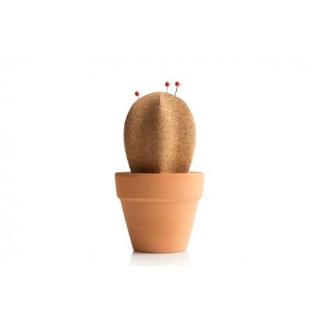 Cork cactus desc tidy